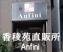 anfini3